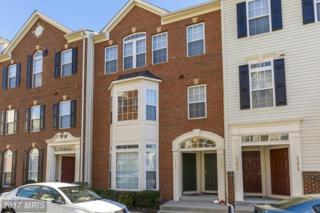 41823 Inspiration Terrace #41823, Aldie, VA 20105 (#LO9883756) :: LoCoMusings