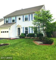 21062 Ethan Court, Sterling, VA 20164 (#LO9889565) :: Pearson Smith Realty