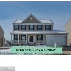 35507 Saint James Drive, Round Hill, VA 20141 (#LO9890558) :: LoCoMusings