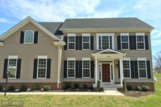 13860 Paris Breeze Place, Purcellville, VA 20132 (#LO9893133) :: Pearson Smith Realty