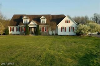 15215 Cider Mill Road, Purcellville, VA 20132 (#LO9894079) :: Pearson Smith Realty