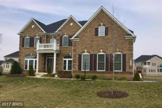 42466 Fawn Meadow Place, Chantilly, VA 20152 (#LO9896601) :: LoCoMusings