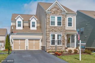 42616 Willow Bend Drive, Ashburn, VA 20148 (#LO9900454) :: Robyn Burdett Real Estate Group