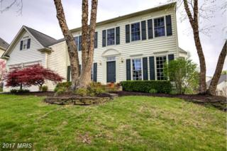21463 Basil Court, Broadlands, VA 20148 (#LO9907859) :: Circadian Realty Group