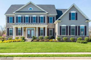 42475 Fawn Meadow Place, Chantilly, VA 20152 (#LO9911232) :: Pearson Smith Realty