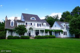 17050 Flint Farm Drive, Round Hill, VA 20141 (#LO9912427) :: Pearson Smith Realty