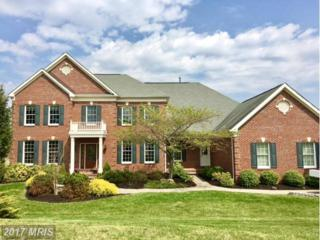 17912 Braemar Place, Leesburg, VA 20175 (#LO9916181) :: Pearson Smith Realty