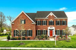 20661 Perennial Lane, Ashburn, VA 20147 (#LO9921548) :: Pearson Smith Realty