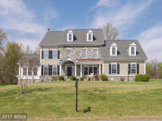 17487 Flint Farm Drive, Round Hill, VA 20141 (#LO9922635) :: Pearson Smith Realty