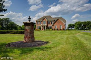 16762 Chestnut Overlook Drive, Purcellville, VA 20132 (#LO9930002) :: Pearson Smith Realty