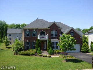 25600 Summerall Drive, Aldie, VA 20105 (#LO9936306) :: Pearson Smith Realty