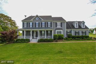 37181 Spruce Knoll Court, Purcellville, VA 20132 (#LO9941402) :: Pearson Smith Realty