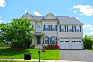 42157 Black Hills Place, Aldie, VA 20105 (#LO9941659) :: Pearson Smith Realty