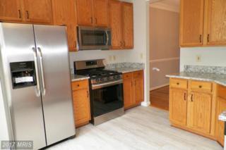 20487 Cool Fern Square, Ashburn, VA 20147 (#LO9944950) :: Wicker Homes Group