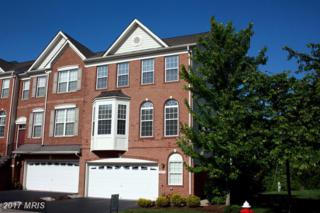 20054 Northville Hills Terrace, Ashburn, VA 20147 (#LO9947803) :: Pearson Smith Realty
