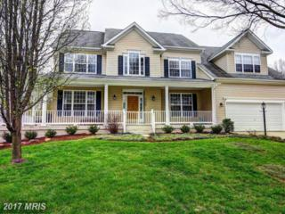 21358 Gentle Heights Court, Ashburn, VA 20148 (#LO9951910) :: Pearson Smith Realty