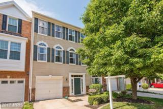44096 Rising Sun Terrace, Ashburn, VA 20147 (#LO9951921) :: Wicker Homes Group