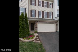 25173 Hummocky Terrace, Aldie, VA 20105 (#LO9956869) :: Century 21 New Millennium