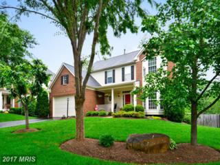 42738 Middle Ridge Place, Broadlands, VA 20148 (#LO9957692) :: Wicker Homes Group