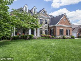 24102 Mercers Crossing Court, Aldie, VA 20105 (#LO9958660) :: Wicker Homes Group