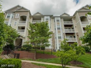 501 Sunset View Terrace SE #207, Leesburg, VA 20175 (#LO9960047) :: Wicker Homes Group