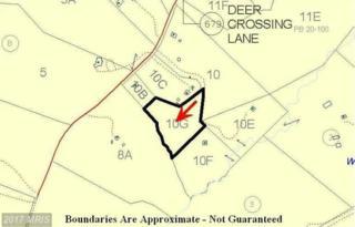 Deer Crossing Lane, Orange, VA 22960 (#MA9516964) :: LoCoMusings
