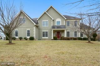 16408 Hillcroft Drive, Rockville, MD 20853 (#MC9847825) :: Pearson Smith Realty