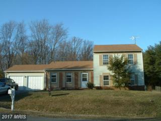 18529 Kilt Terrace, Olney, MD 20832 (#MC9898690) :: Pearson Smith Realty