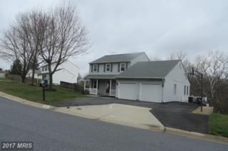 24821 Nickelby Drive, Damascus, MD 20872 (#MC9902302) :: Pearson Smith Realty