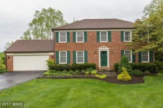 8513 Paddockview Drive, Gaithersburg, MD 20882 (#MC9933256) :: Pearson Smith Realty