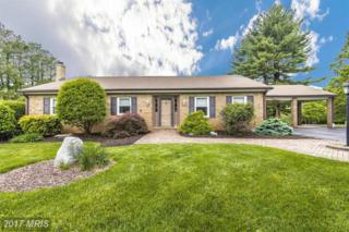25000 Silver Crest Drive, Gaithersburg, MD 20882 (#MC9933948) :: Pearson Smith Realty