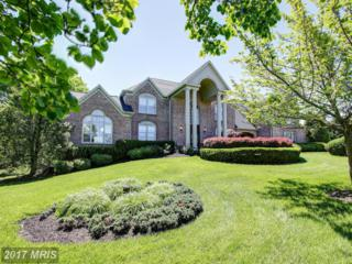 2006 Carter Mill Way, Brookeville, MD 20833 (#MC9941074) :: Pearson Smith Realty