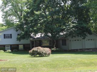 8200 Seneca View Drive, Gaithersburg, MD 20882 (#MC9943687) :: Pearson Smith Realty