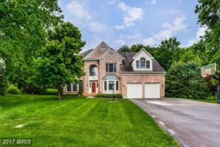 13616 Valley Drive, Rockville, MD 20850 (#MC9953077) :: Pearson Smith Realty