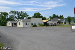 1 Lincoln, Fort Ashby, WV 26719 (#MI8644651) :: Pearson Smith Realty