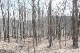 Joseph Hanks Drive, New Creek, WV 26743 (#MI9559229) :: Pearson Smith Realty