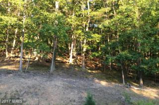 Moon Ridge Lane, Burlington, WV 26710 (#MI9688314) :: Pearson Smith Realty