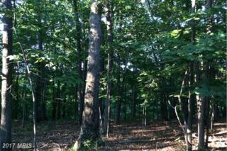 Champwood Ridge, Keyser, WV 26726 (#MI9718308) :: Pearson Smith Realty