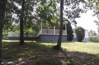838 Brenwood Farms Road, Burlington, WV 26710 (#MI9740492) :: Pearson Smith Realty