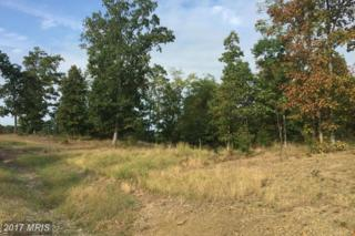 Magnolia Drive, Fort Ashby, WV 26719 (#MI9767635) :: Pearson Smith Realty