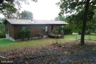 1300 Whitetail Ridge Road, Burlington, WV 26710 (#MI9768590) :: Pearson Smith Realty