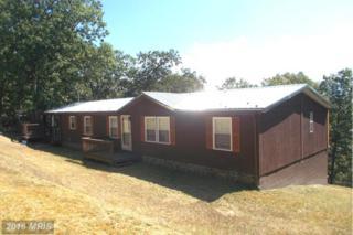 457 Windy Ridge Lane, Burlington, WV 26710 (#MI9783414) :: Pearson Smith Realty