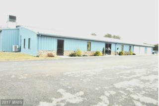 0 Route 28, Fort Ashby, WV 26719 (#MI9850191) :: LoCoMusings