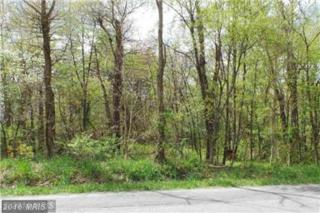 16 Winchester Grade Rd, Berkeley Springs, WV 25411 (#MO9652629) :: Pearson Smith Realty