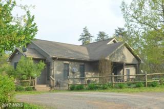 234 Miller Lane, Berkeley Springs, WV 25411 (#MO9905186) :: Pearson Smith Realty