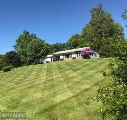 415 Grove Heights Road, Berkeley Springs, WV 25411 (#MO9946227) :: Pearson Smith Realty
