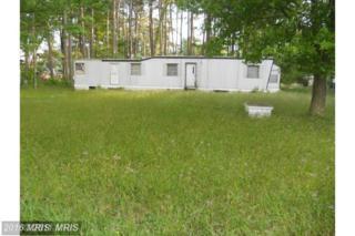 0 Chesapeake Street, Reedville, VA 22539 (#NV8571304) :: Pearson Smith Realty