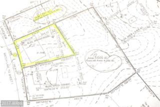 22 Lakeview Lane, Orange, VA 22960 (#OR8698489) :: Pearson Smith Realty