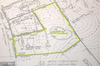 23 Lakeview Lane, Orange, VA 22960 (#OR8698498) :: Pearson Smith Realty