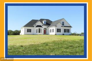 Lot 5 Walkers Branch Road, Unionville, VA 22567 (#OR9637818) :: Pearson Smith Realty